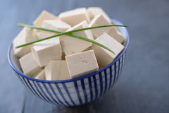 Tofu Στοκ φωτογραφία με δικαίωμα ελεύθερης χρήσης