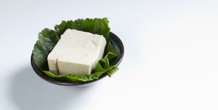 Tofu arkivbilder