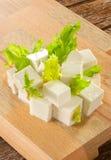tofu стоковые изображения