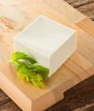 tofu Fotografering för Bildbyråer