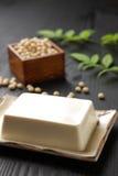 tofu Zdjęcie Royalty Free