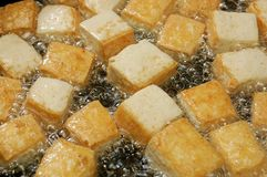 tofu Стоковое Изображение