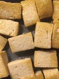 tofu Royaltyfri Foto