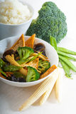 Tofu beancurd and vegetables. Fresh and healthy tofu,beancurd with mix vegetables typical chinese dish Stock Photography