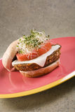 Tofu Burger Stock Photos