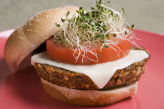 Tofu Burger. Veggie Tofu Burger with Soy Mozzarella Cheese and Alfalfa Sprouts Royalty Free Stock Photography