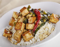 Tofu with Chinese Broccoli and Rice Stock Photography