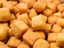 Tofu chuchu cecha zdjęcie stock