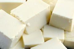 Tofu close up Stock Images