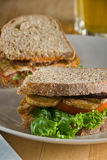 tofu club sandwich Stock Image