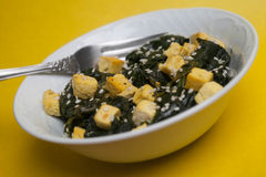 Tofu com espinafres no sésamo Fotografia de Stock Royalty Free