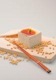 Tofu com limpeza do molho da soja Foto de Stock Royalty Free