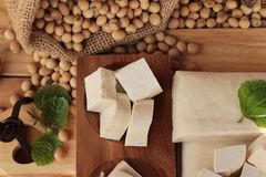 Tofu for cooking and soybean seed. Royalty Free Stock Images