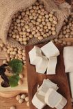 Tofu for cooking and soybean seed. Stock Images