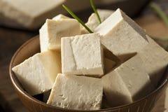 Tofu cru orgânico da soja Imagens de Stock Royalty Free