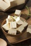 Tofu cru orgânico da soja Fotografia de Stock