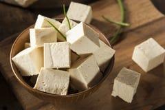 Tofu cru organique de soja images stock