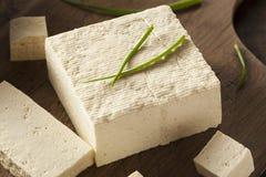 Tofu cru organique de soja Images libres de droits