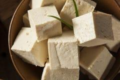 Tofu cru organique de soja Photos stock