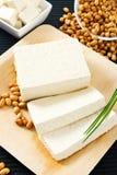 Tofu e feijões de soja imagem de stock