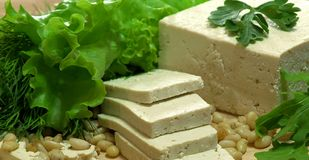 Tofu fresco Foto de Stock Royalty Free