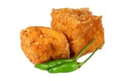 Tofu fritto Immagini Stock Libere da Diritti