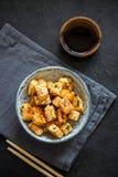 Tofu fritto scalpore immagine stock