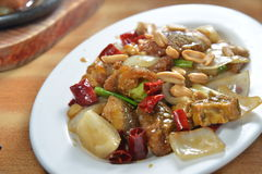Tofu gefrituurd varkensvlees Royalty-vrije Stock Foto