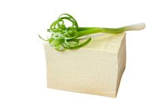 Tofu and Green Onion Stock Photography