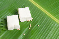 tofu jest dobrym źródłem proteina obrazy stock