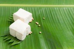 tofu jest dobrym źródłem proteina zdjęcia stock
