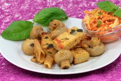 Tofu meal Royalty Free Stock Images
