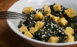Tofu med spenat Arkivbild