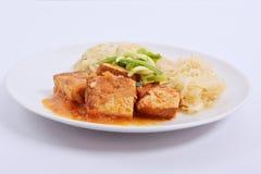 Tofu met kool en rijstbollen op een wit Royalty-vrije Stock Fotografie