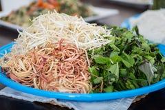 Tofu och haricot vert med morötter och selleri Royaltyfri Bild