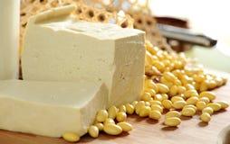 Tofu- och sojabönabönor arkivbild