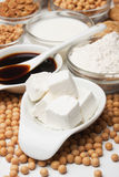 Tofu and other soy products. Tofu, soy milk, flour and other products of soybean Stock Photos