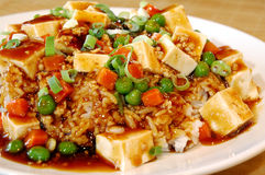 Tofu piccante Immagini Stock