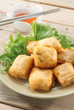 Tofu profond de mouche images libres de droits