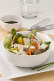 Tofu salad. Stock Photography