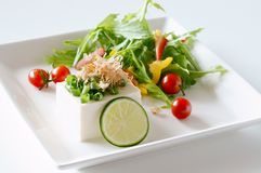 Tofu salad. Japanese cuisine tofu is made from soy Royalty Free Stock Photos
