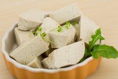 Tofu - soya ser Zdjęcia Stock