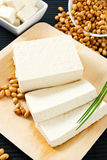 Tofu and Soybeans Stock Image