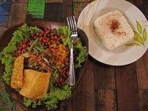 Tofu and Tempeh. An Indonesian vegetarian dish with tofu, tempeh and peanuts Stock Image