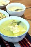 Tofu- und Fischsuppe Lizenzfreies Stockbild