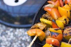 Tofu van de barbecue op vleespennen Stock Foto