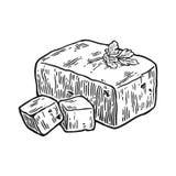 tofu Vector l'illustrazione incisa annata nera isolata su fondo bianco Fotografia Stock