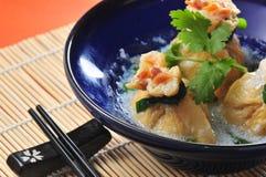 Tofu wonton Royalty Free Stock Photo
