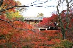 Tofukuji寺庙:京都- 2017年11月25日:在Tofukuj的人群聚集 库存照片