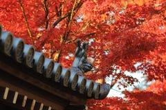 在Tofukuji寺庙的秋季 免版税库存照片